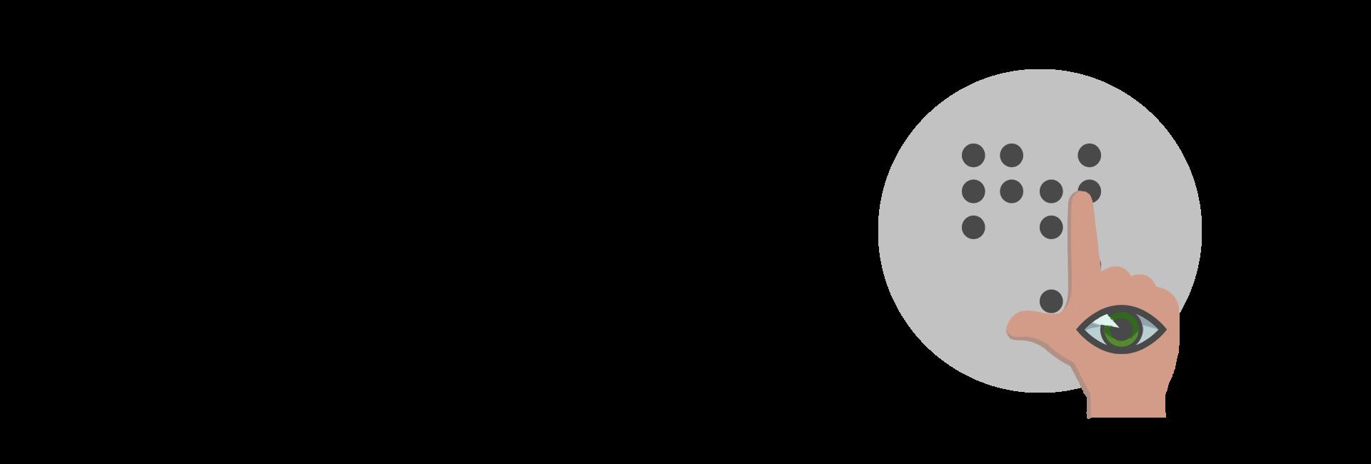 System Braila